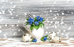 Easter decoration Forget me not flowers egg shell. Easter decoration. Forget me not flowers in egg shell on wooden background royalty free stock images