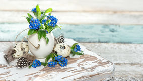 Easter decoration forget me not flowers eggs wooden background. Easter decoration forget me not flowers in egg shell on rustic wooden background Royalty Free Stock Images