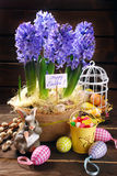Easter decoration with fresh hyacinth flowers on wooden backgrou Stock Images