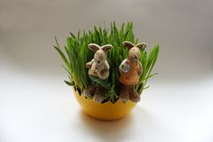 Easter decoration with green plants and bunnies stock images