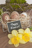 Easter decoration with greeting Royalty Free Stock Image
