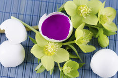 Easter decoration with hellebore and egg shell with magenta tempera paint. On a blue pad stock images