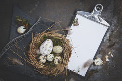 Easter  decoration with nest and egg on dark background Royalty Free Stock Photography