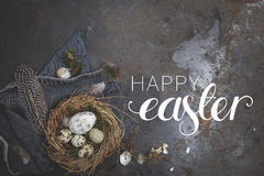 Easter  decoration with nest and egg on dark background Stock Images