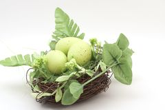 Easter decoration. Nest with green eggs. Easter decorative nest with green eggs and leaves Stock Image