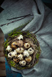 Easter decoration - a nest with quail eggs - on wooden table Stock Photo