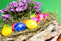 Easter decoration. Painted eggs with hay and flowers Royalty Free Stock Photography