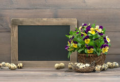 Easter decoration pansy flowers and blackboard Royalty Free Stock Image