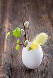Easter decoration in a white egg shell Royalty Free Stock Photography