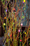 Easter decoration shrub Royalty Free Stock Photography