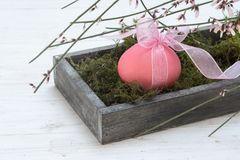 Easter decoration, single pink egg in a wooden box with moss and Royalty Free Stock Photo