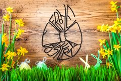 Easter Decoration, Spring Flower Calligraphy Frohe Ostern Means Happy Easter royalty free stock photo