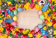 Easter decoration with spring flowers and colored eggs Stock Image