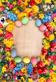 Easter decoration with spring flowers and colored eggs Royalty Free Stock Images
