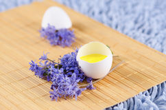 Easter decoration with spring flowers and egg shell. With yellow tempera paint royalty free stock images