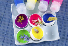 Easter decoration with spring flowers and egg shells with paints. On a blue pad Stock Photos