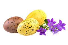 Easter decoration with spring flowers over white Royalty Free Stock Photo