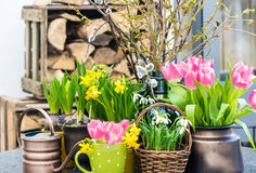 Easter decoration with spring flowers Royalty Free Stock Photos