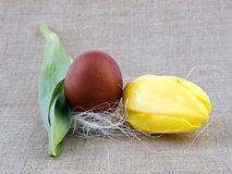 Easter decoration - tulip and egg Stock Photo