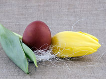 Easter decoration - tulip and egg Royalty Free Stock Image