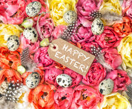 Easter decoration tulip flowers eggs. Happy Easter Stock Image