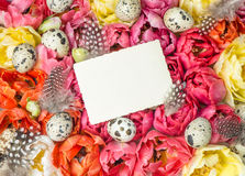 Easter decoration with tulip flowers and eggs Stock Photo