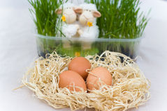 Easter decoration with two lamb Stock Photography