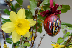 Easter decoration - vernal flowers. Daffodil and artistically painted Easter egg in flowers royalty free stock photos