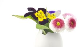 Easter decoration w. egg and flowers Royalty Free Stock Photo