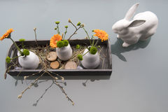 Easter decoration with white bunny and gerbera Stock Photos