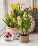 Easter decoration on the window and yellow daffodils Royalty Free Stock Image