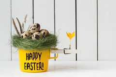 Easter Decoration - Yellow Cup with Quail Eggs in a Nest on Top and a Clothespin with an Orange Crocus Flower Stock Images