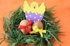 Easter decoration: yellow eggs and hand made hatched chicken in eggshell in green grass twigs nest on orange background Stock Image