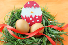 Easter decoration: yellow eggs and hand made hatched chicken in eggshell in green grass twigs nest on orange background Stock Photos