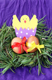 Easter decoration: yellow eggs and hand made hatched chicken in eggshell in green grass twigs nest on purple background Stock Images