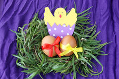 Easter decoration: yellow eggs and hand made hatched chicken in eggshell in green grass twigs nest on purple background Royalty Free Stock Image