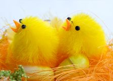 Easter decorations - chickens with eggs. Easter decorations. On the picture two chickens with eggs in the brood Royalty Free Stock Image