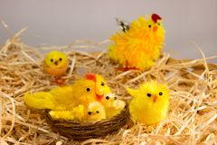 Easter decorations - chickens and hens on a straw. Easter decorations. In the wicker basket are straw chickens and hen. In the brood are too chickens and hen Stock Images