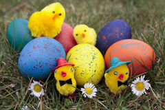 Easter decorations Stock Image