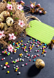 Easter decorations.Eggs in nest with spring flowers Royalty Free Stock Photography