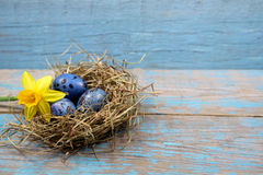 Easter decorations. Eggs in nests on wood Stock Photo