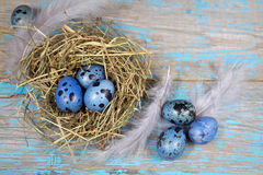 Easter decorations. Eggs in nests on wood Royalty Free Stock Photos