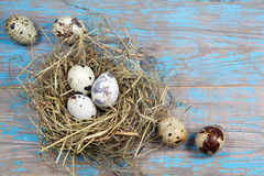 Easter decorations. Eggs in nests on wood Royalty Free Stock Images