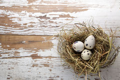 Easter decorations. Eggs in nests on wood Royalty Free Stock Photo