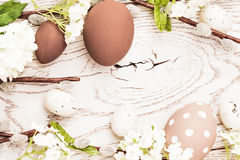 Easter decorations with spring flowers Stock Photo