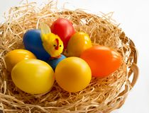 Easter decorations - chicken and colorful eggs. Easter decorations. In the wicker basket is a chicken with colorful eggs in the brood Stock Images