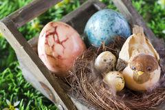 Easter decorative  bird with eggs Royalty Free Stock Photos