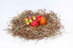 Easter decorative chocolate and chicken eggs in the nest Stock Photo