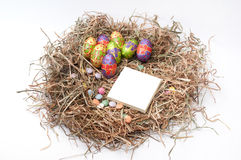 Easter decorative chocolate eggs in the nest with empty note pap Stock Photos