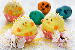 Easter dessert candy in shape of yellow chick in chocolate. Fest Stock Photo